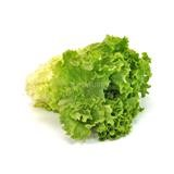 Picture of Lettuce - Organic 100gm